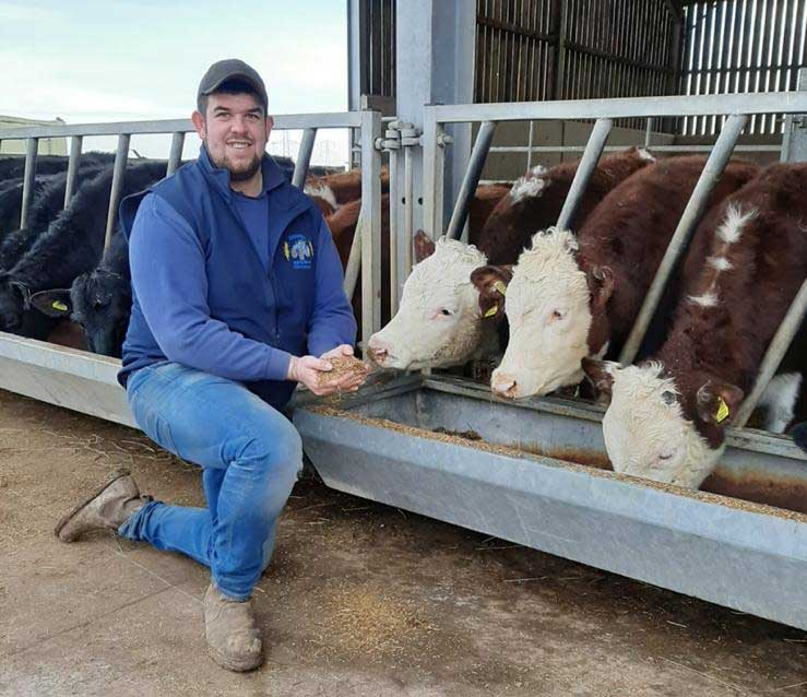 Rob Moore with his beef beef cattle