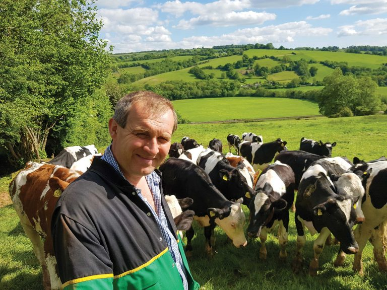 Perfecting the techniques of making maize silage on a Herefordshire farm has created knock-on opportunities which have lifted performance across the whole business.