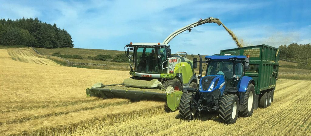 Higher quality silage