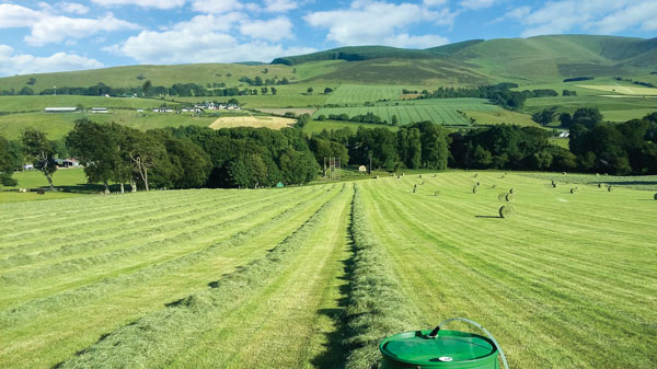 Cutting risk in cereal and forage on LFA farm