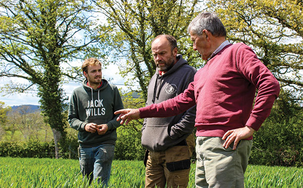 Gruff and Martyn discuss this years barley crop with Andy